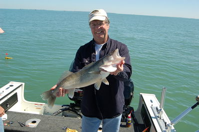 Lake Erie Fishing Charters on 2012 Walleye Charters   April 7th 009   Blue Dolphin Walleye Charters